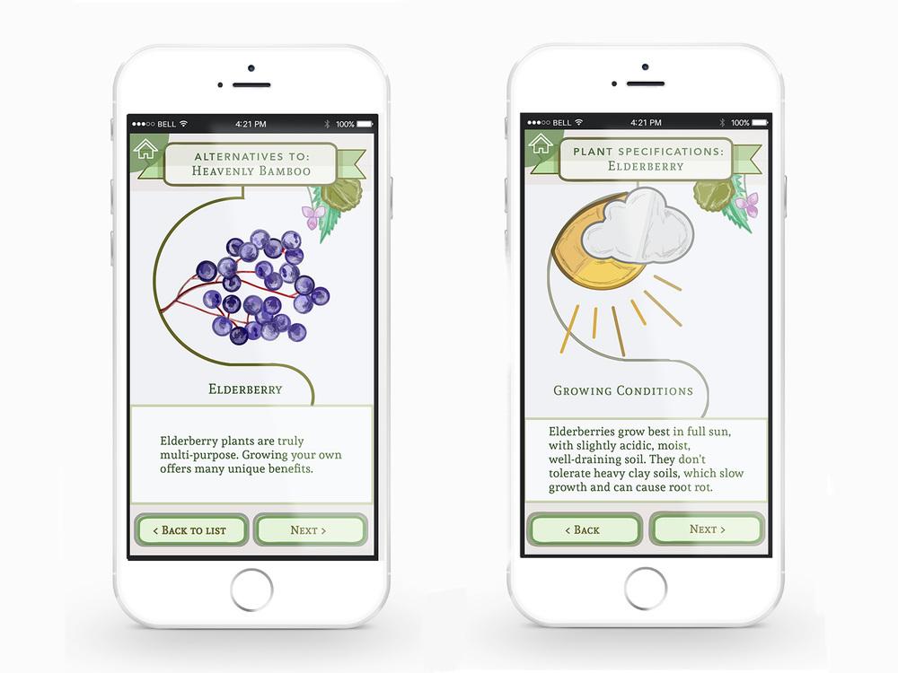 Plantae Phone App