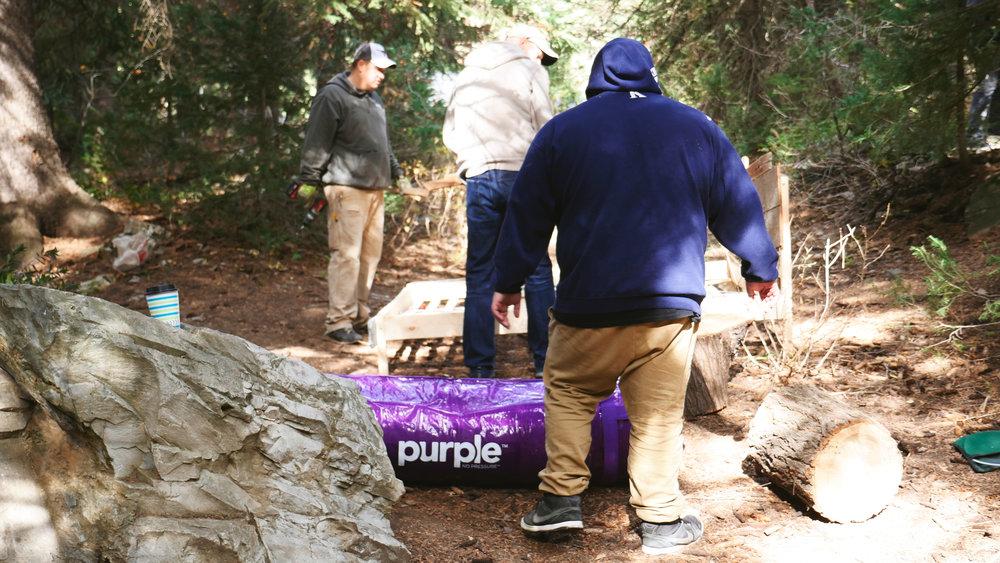 Purple51.jpg