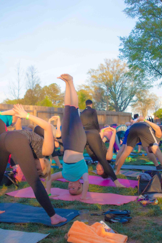Charlotte-Yoga-On-Tap-37.JPG