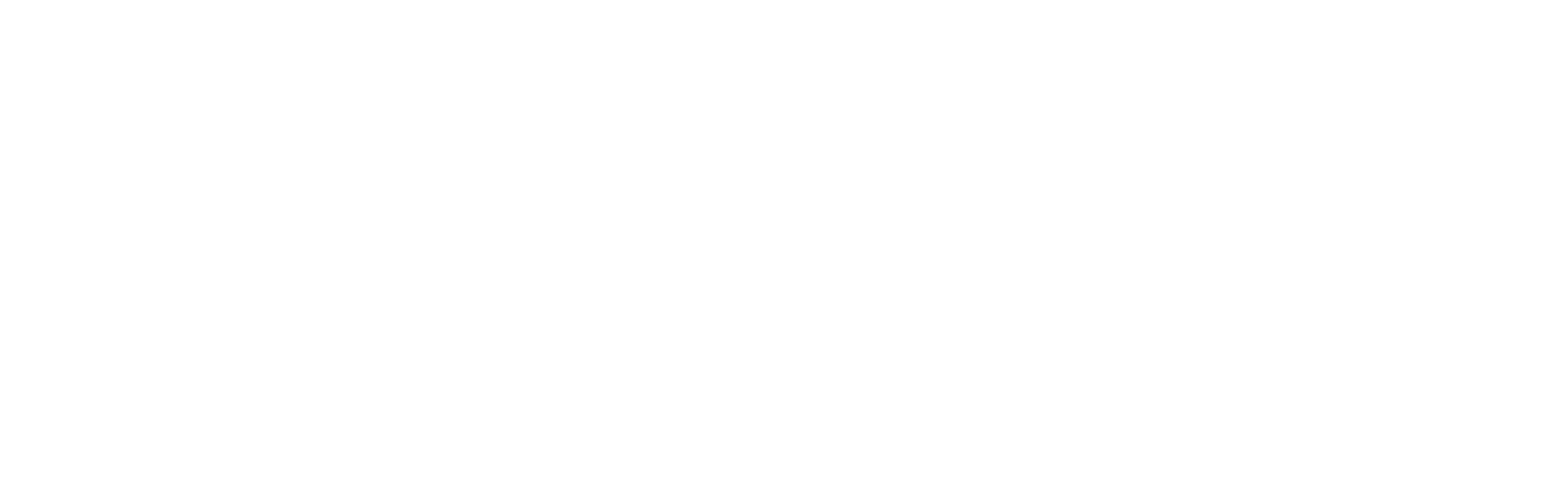 Terence L. McGuire CPA Financial Planner