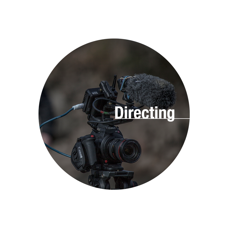 directing button.png