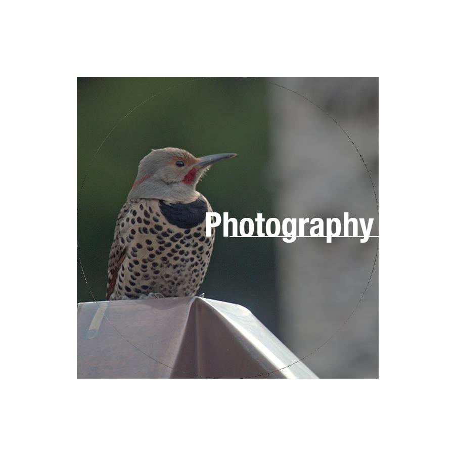 photographybutton.png