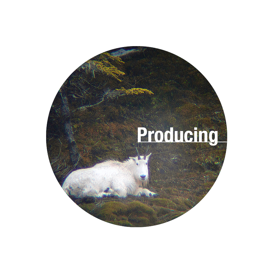 Producing Button.png