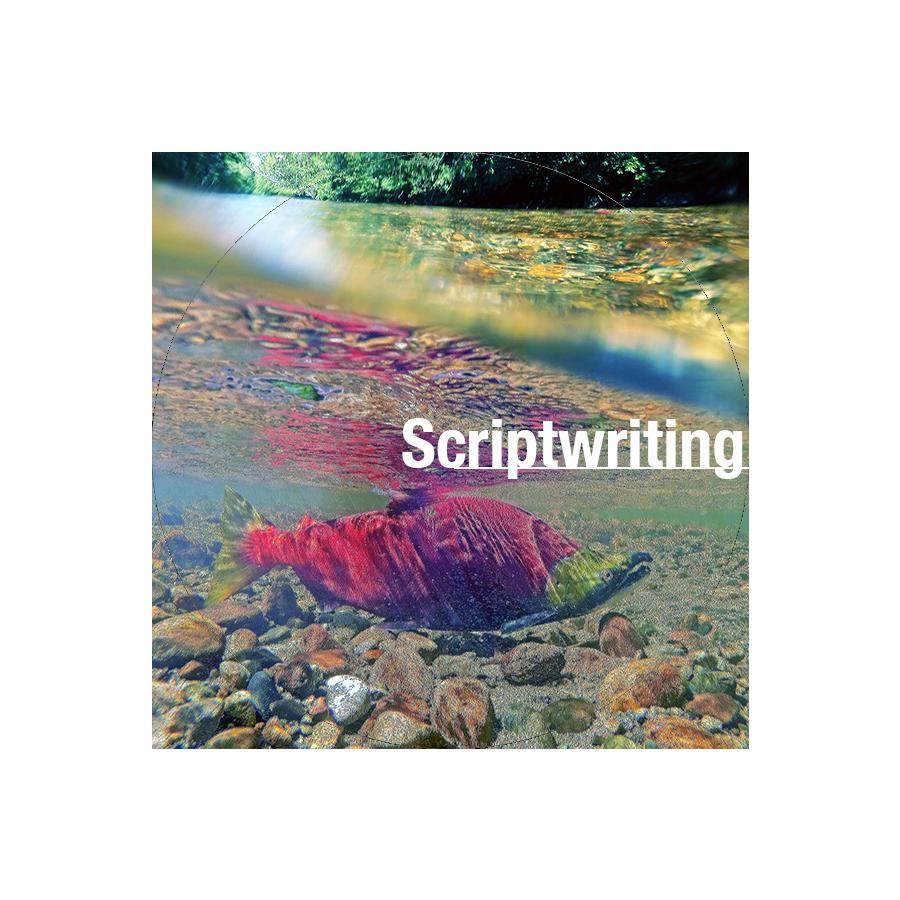 Scriptwriting.png