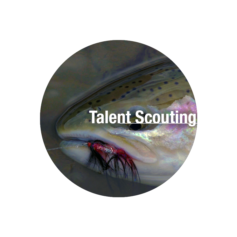 Talent Scouting.png