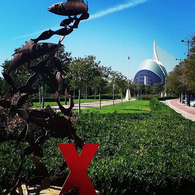 Asi son los inviernos en Valencia, España! Ya pronto regresa TEDXBerkleeValencia a esta hermosa ciudad. #muypronto #comingsoon #TED #TEDx #TEDxBV #TEDxBV16 #TEDxBerkleeValencia #igersvalencia #igersvalencians #valenciagram #valencia #valenciaspain #spain #españa #IdeasWorthSpreading  #WhereIsTheX #DondeEstaLaX