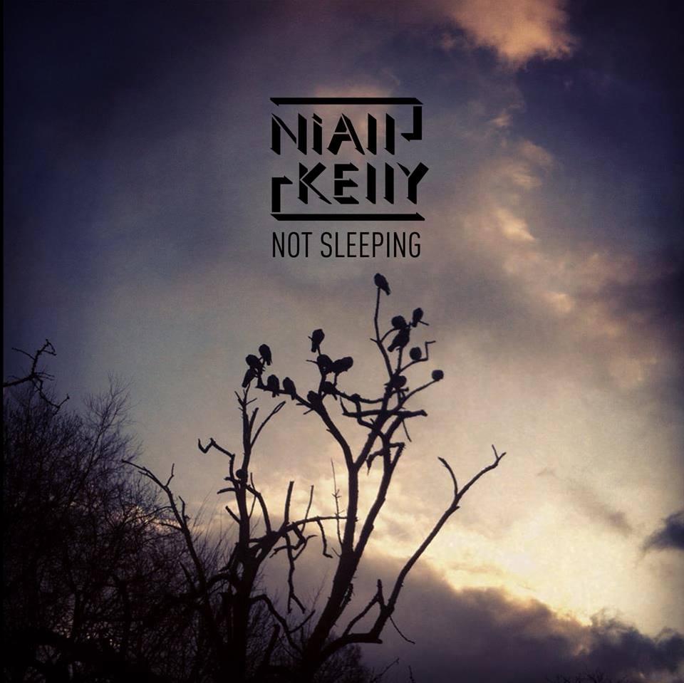 niall album cover.jpg