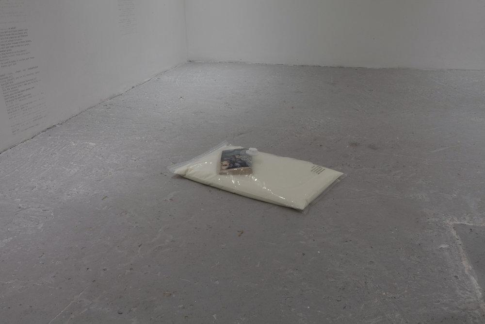 Untitled, Vacuum seal bag, milk, The Fountainhead by Ayn Rand, 8.5 x 60 x 38 cm, 2016