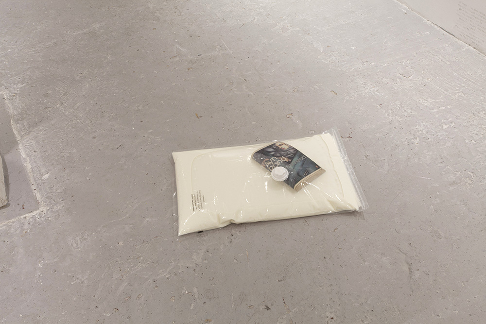 Untitled Vacuum seal bag, milk, The Fountainhead by Ayn Rand 8.5 x 60 x 38 cm, 2016