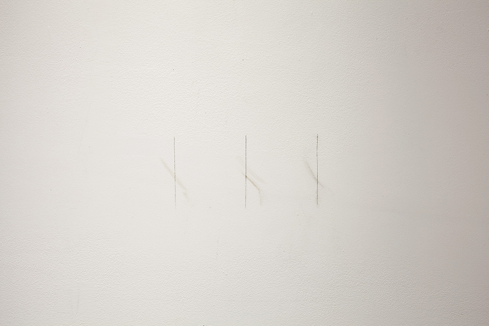 Tally  C  uts to gallery wall marking paint residue from past shows, dead moths from artist's flat pressed into wall 9.7 x 16 cm, 2016