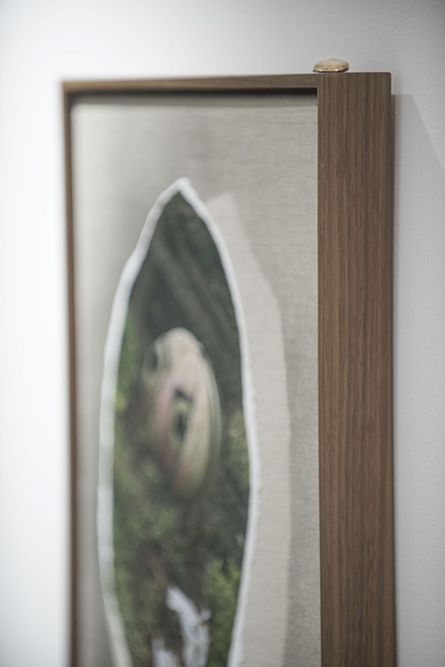 Untitled (detail)   Digital photograph, linen, spray paint, oak frame, bronze     42.5 x 33 cm, 2016