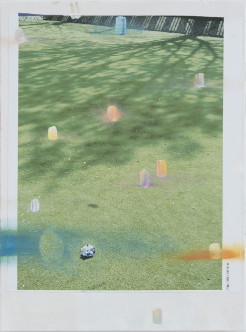 Partial Event, AstroTurf Archival pigment print and oil paint on board 50 x 37 cm, 2017