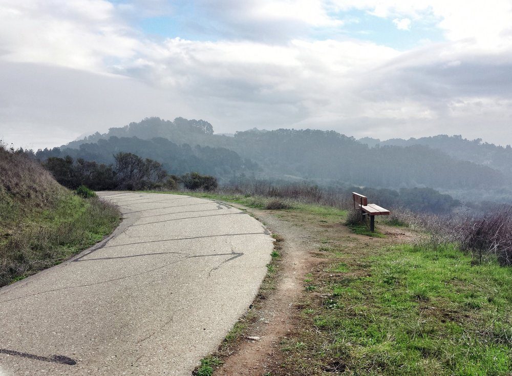 Tilden Park Inspiration Point.jpg