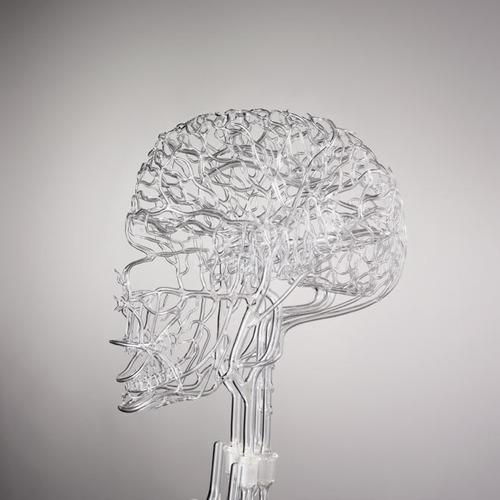 brain_glass_model