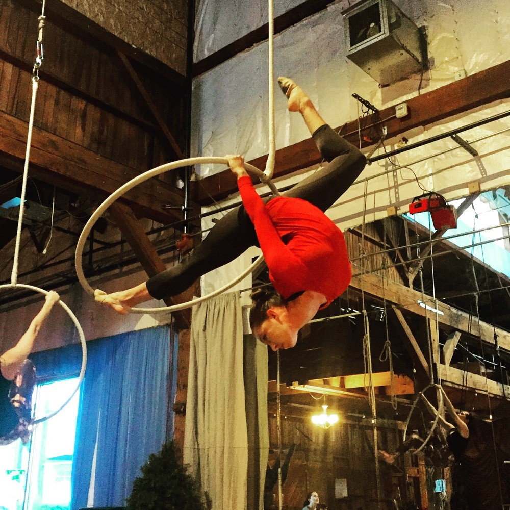 17 January 2016. Seattle, WA. Aerial hoop.