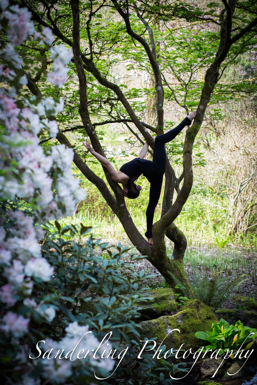 Washington Park Arboretum   Seattle, WA   2016.04.03
