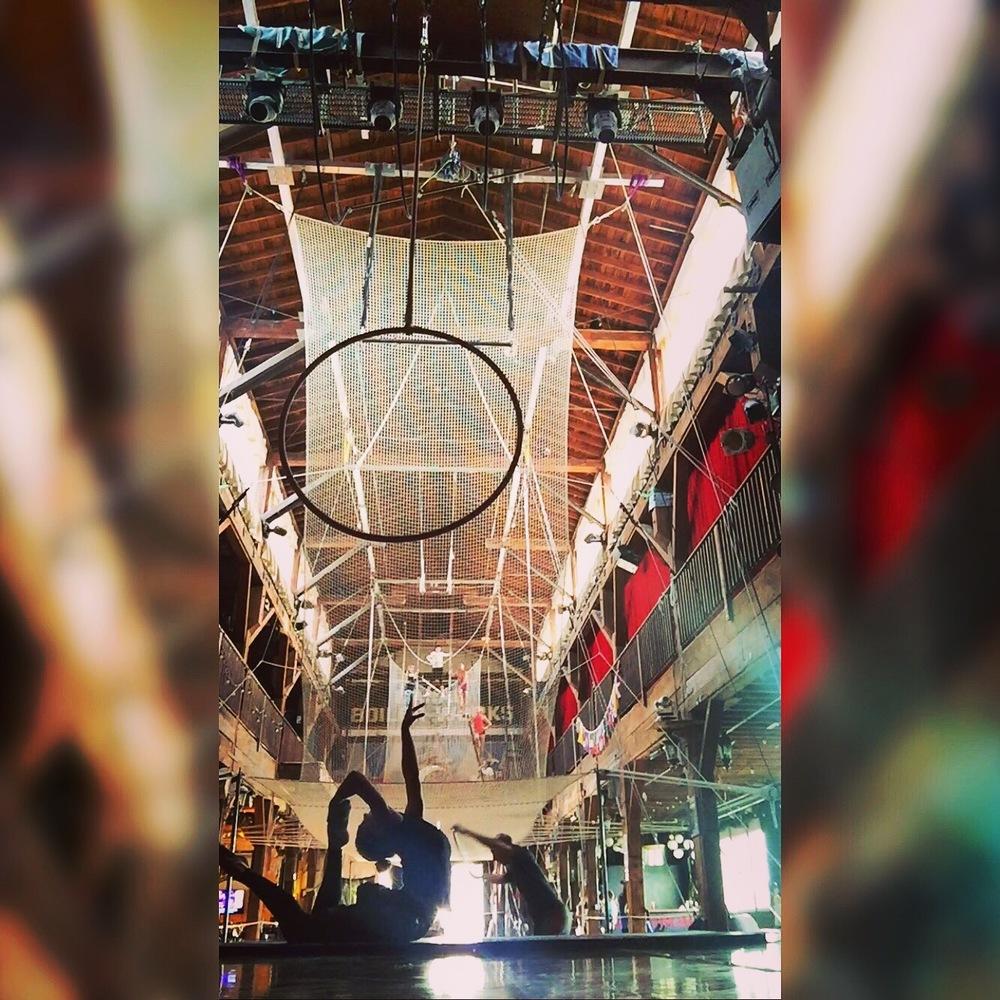 5 May 2016. Seattle, WA. Aerial hoop.