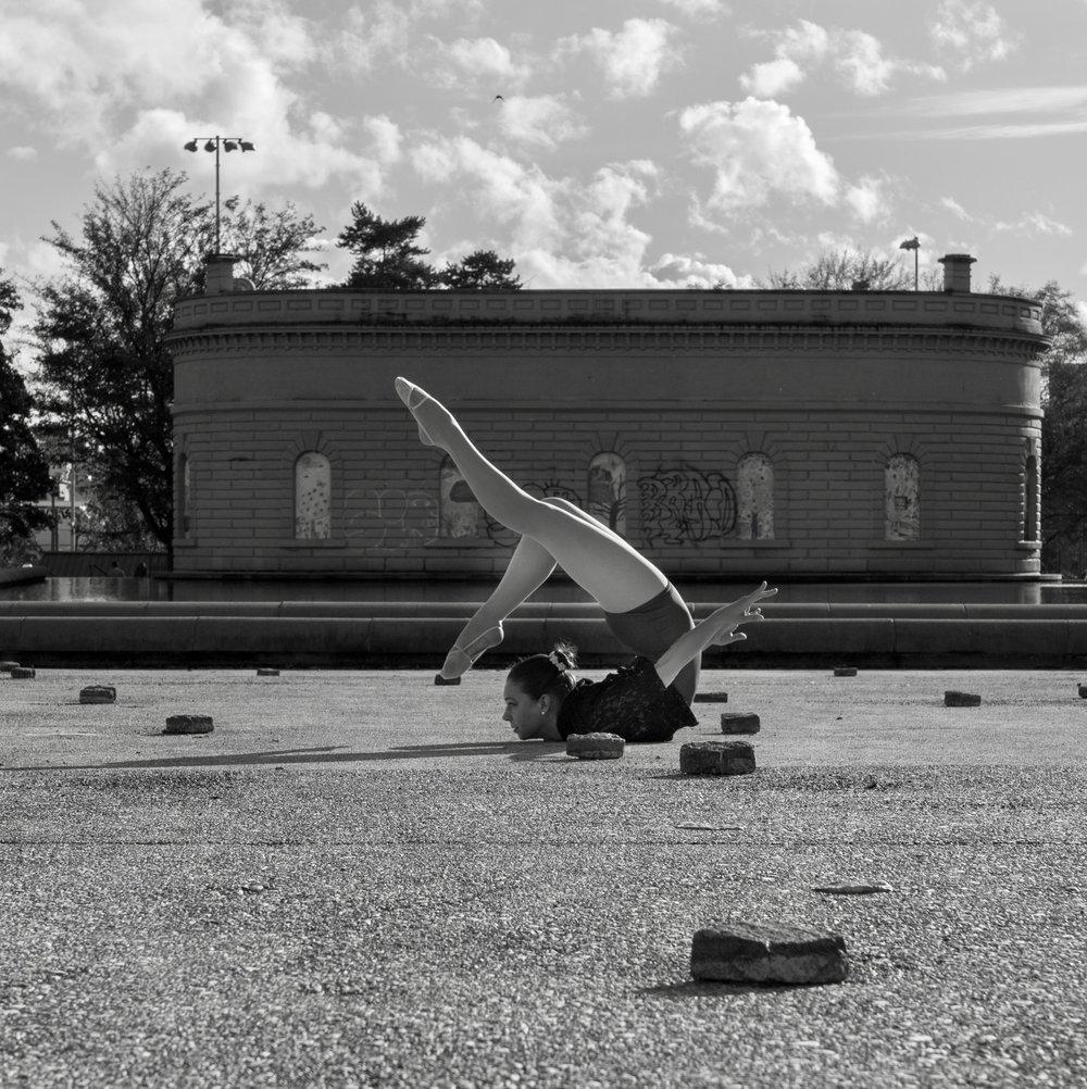 2016-11-06-PHOTO-Sanderling-CapitolHill.JPG