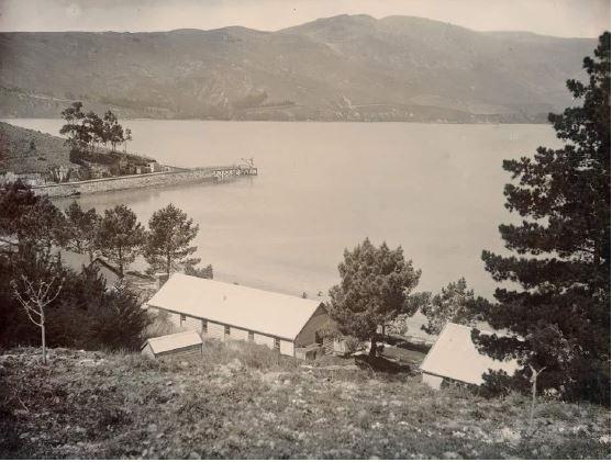 Quail Island au début du 20e siècle. Le débarcadère est visible en second plan (crédit : nzhistory.net.nz)