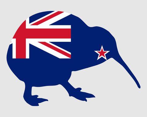 kiwi-slang-expression-nz