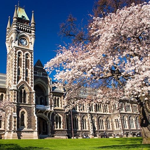 Otago-University-Dunedin