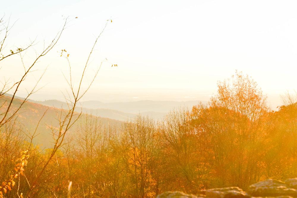 shenandoah_hike-18.jpg