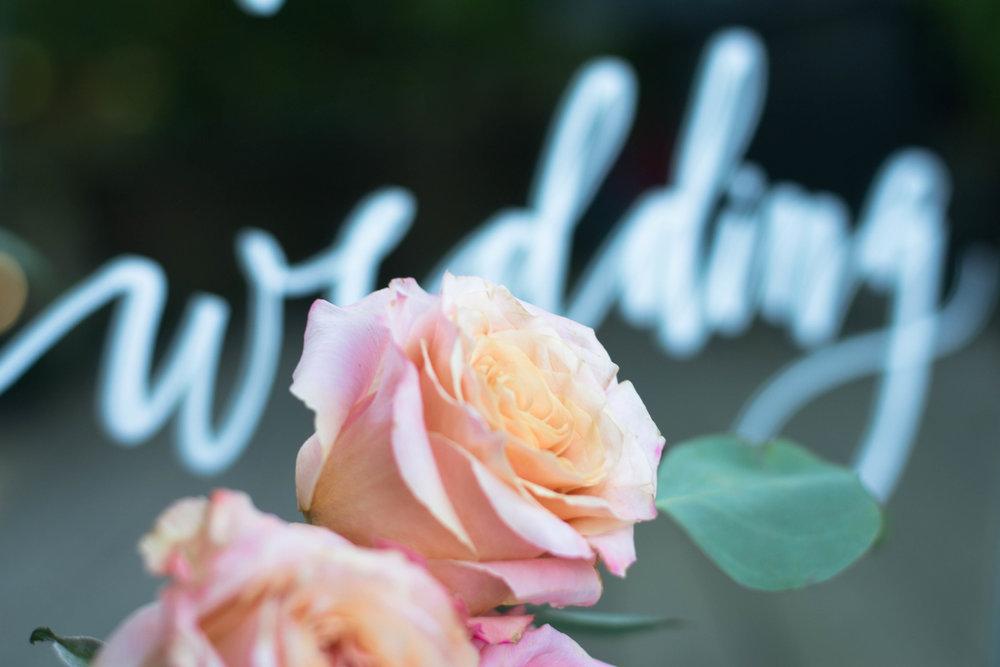 roses_-8.jpg