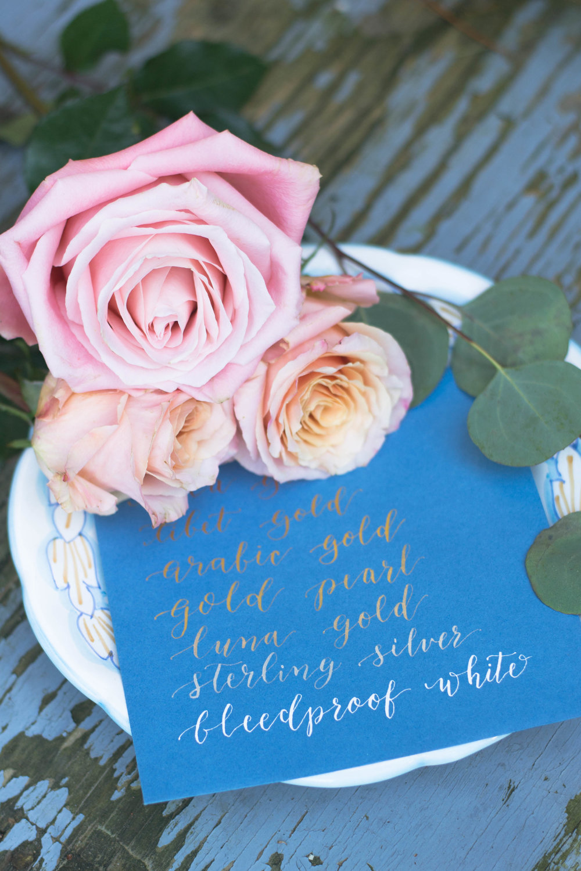 roses_-3.jpg