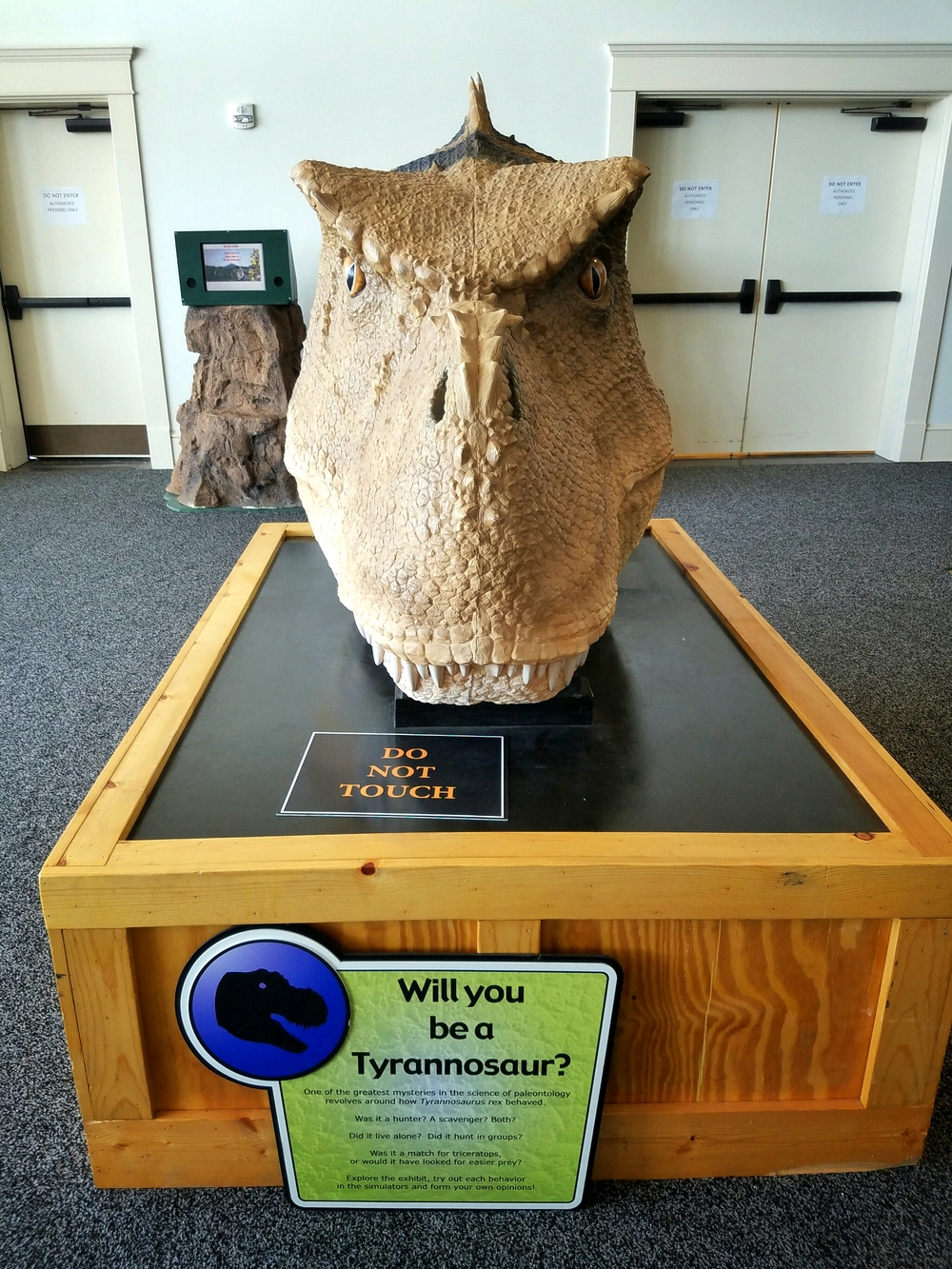 dinosaur exhibit.jpg