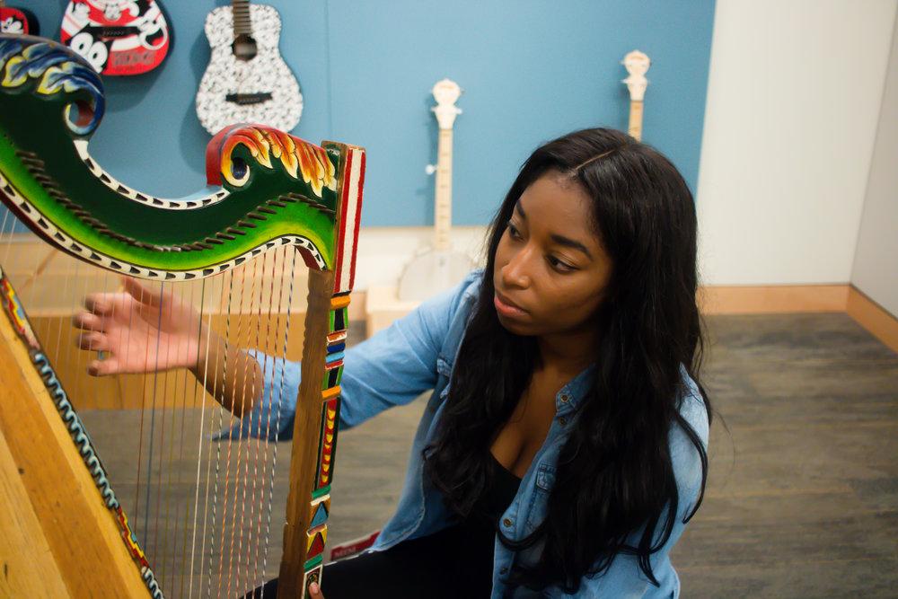 harp-musical-instrument-museum