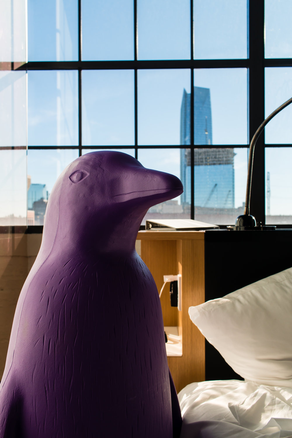 iconic-purple-penguins-21-c-hotel-oklahoma-city
