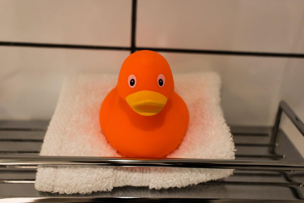 Edited Ducky.jpg