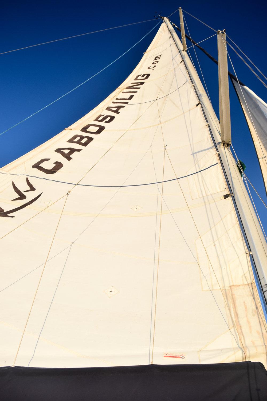 Edited Cabo Sailing sailes.jpg
