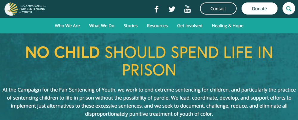 Campaign for the Fair Sentencing of Youth
