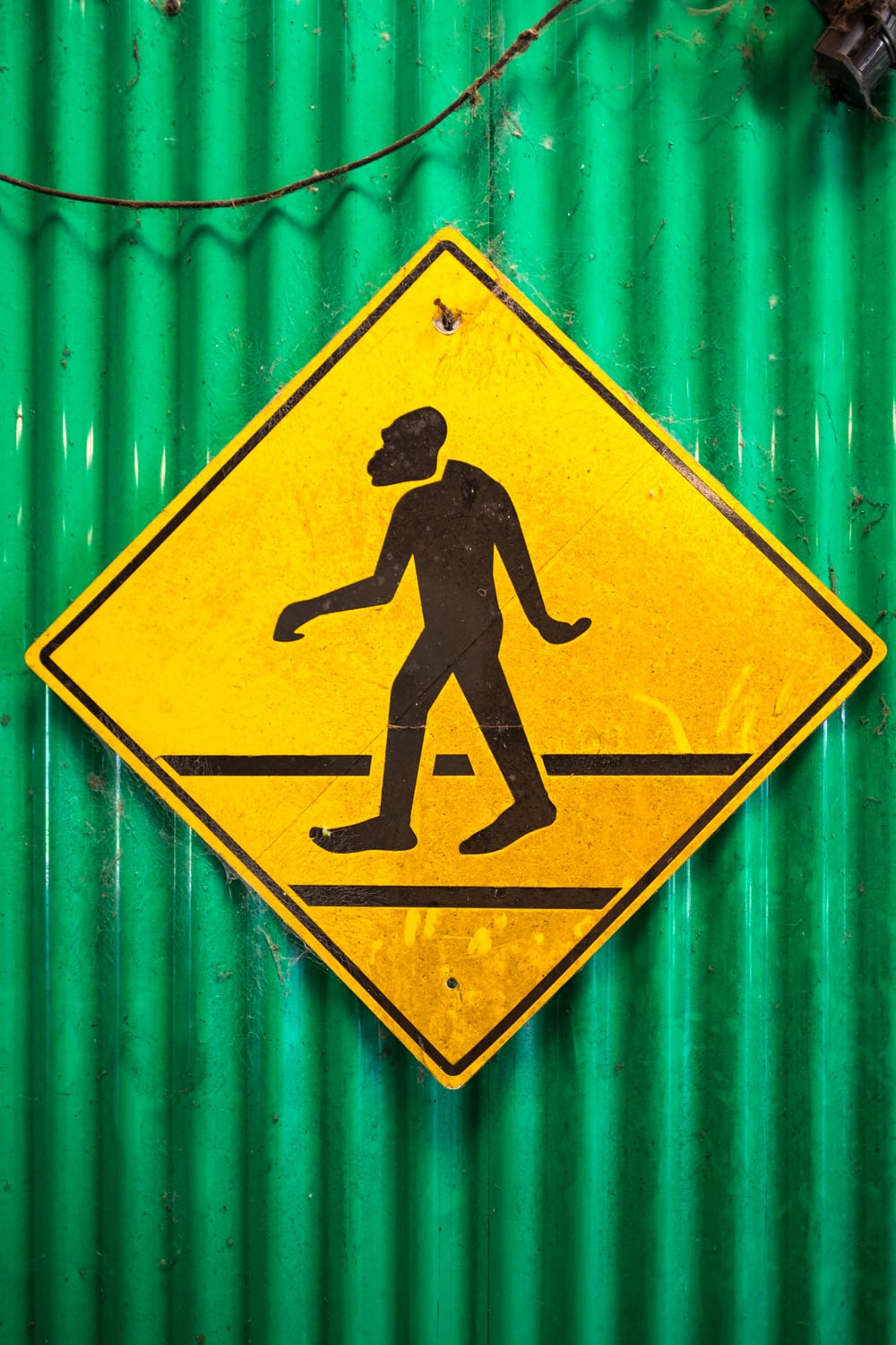 Beware of Skunk Ape crossing! The local bigfoot.