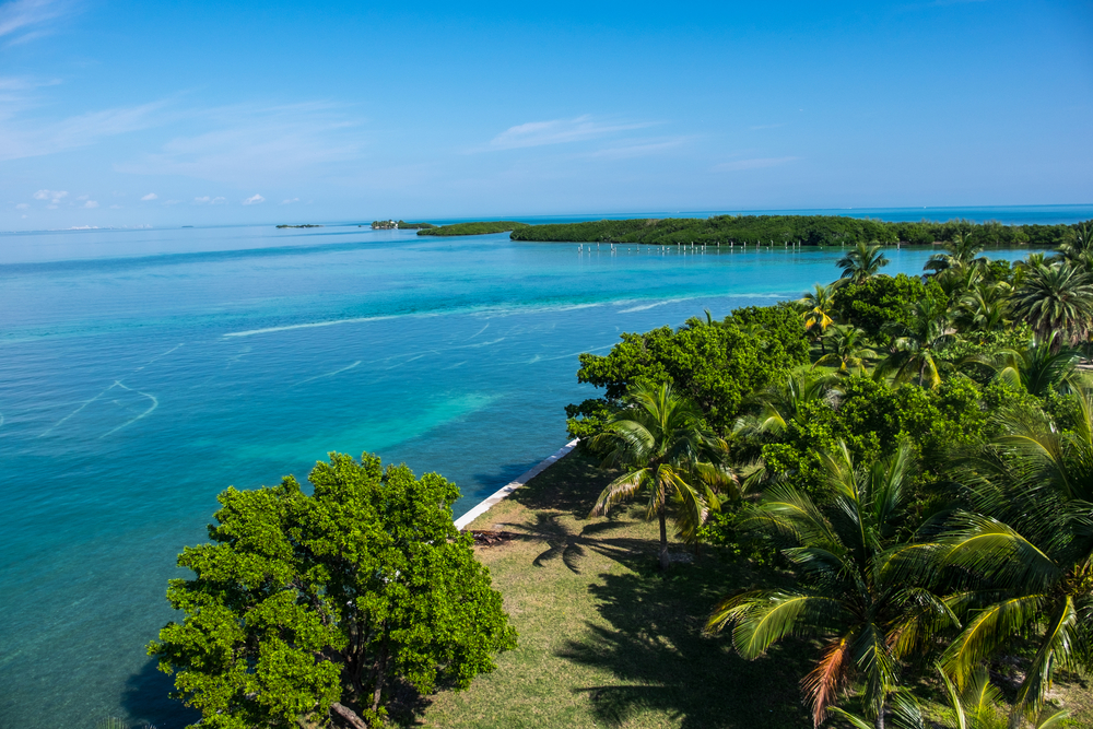 View from the Boca Chita Lighthouse.   Credit: Stefanie Payne