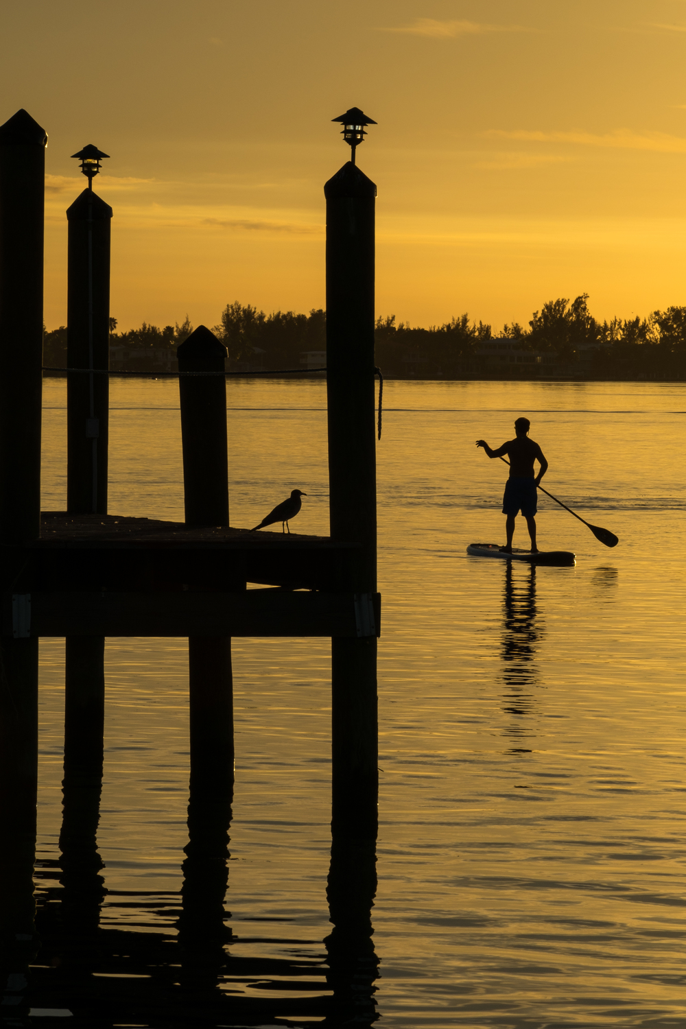 A stand up paddleboarder graces the water during sunset.