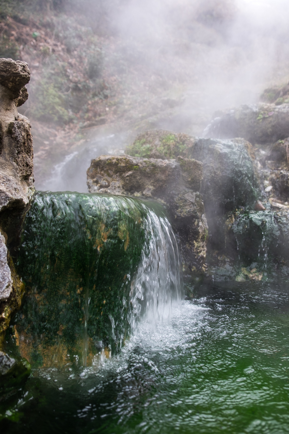 meet hot springs national park singles With its incredible range of precipitation and elevation, diversity is the hallmark of olympic national park encompassing nearly a million acres, the park protects a.