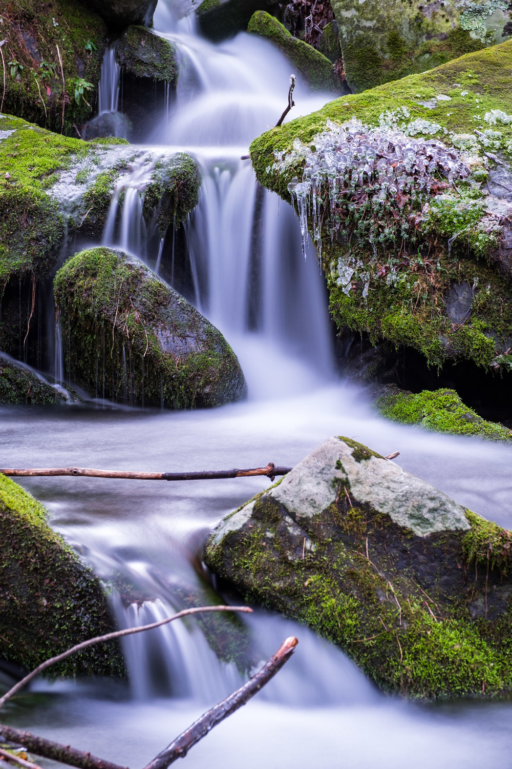 I do love blurring the water in little streams (this is accomplished with a neutral density filter).
