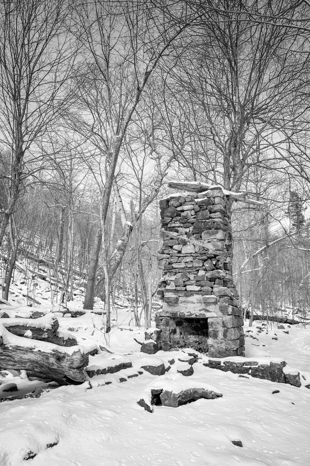 The fireplace is all that remains of previous inhabitants in the park.