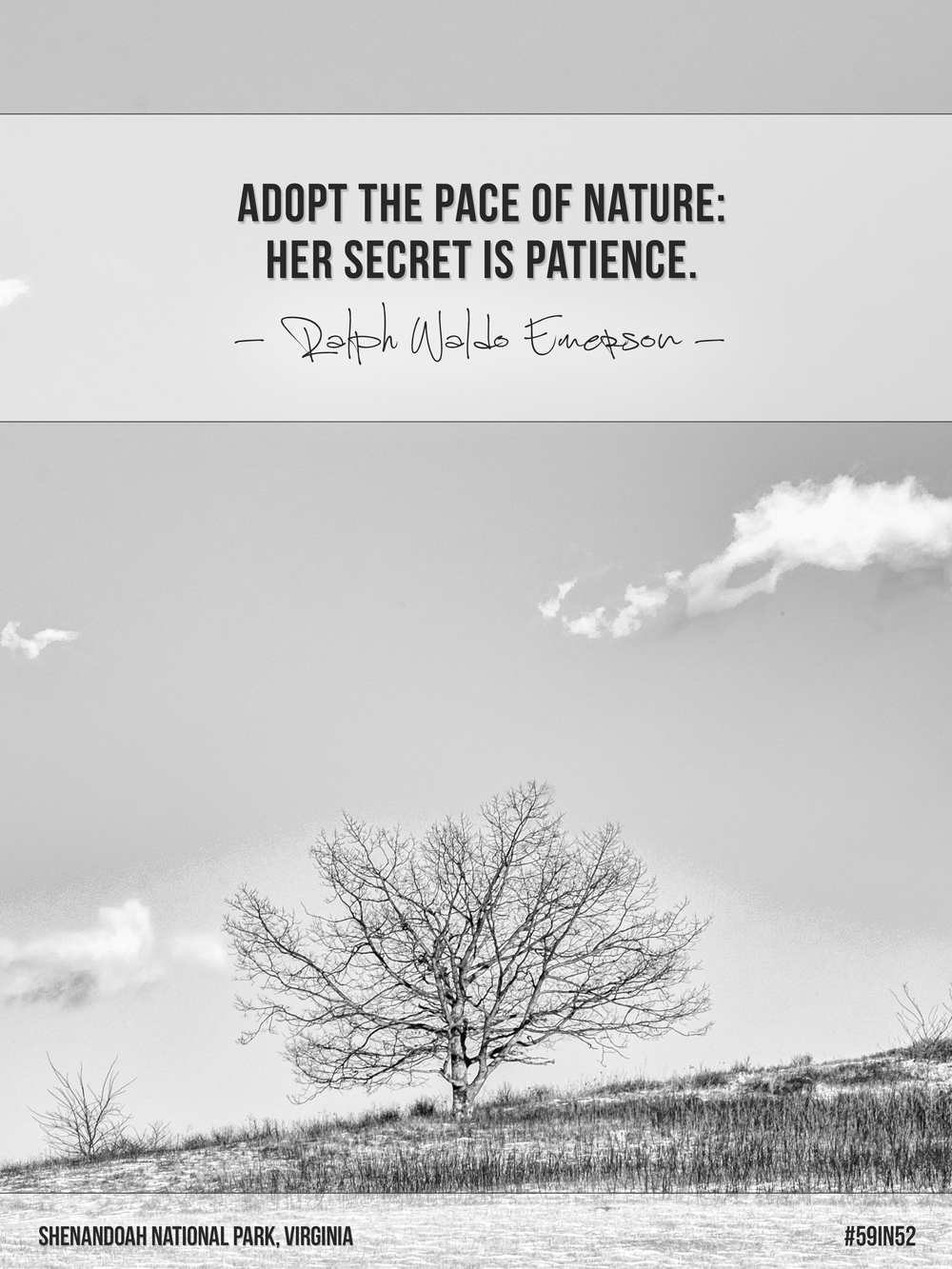 """Adopt the pace of nature: her secret is patience."" - Ralph Waldo Emerson 
