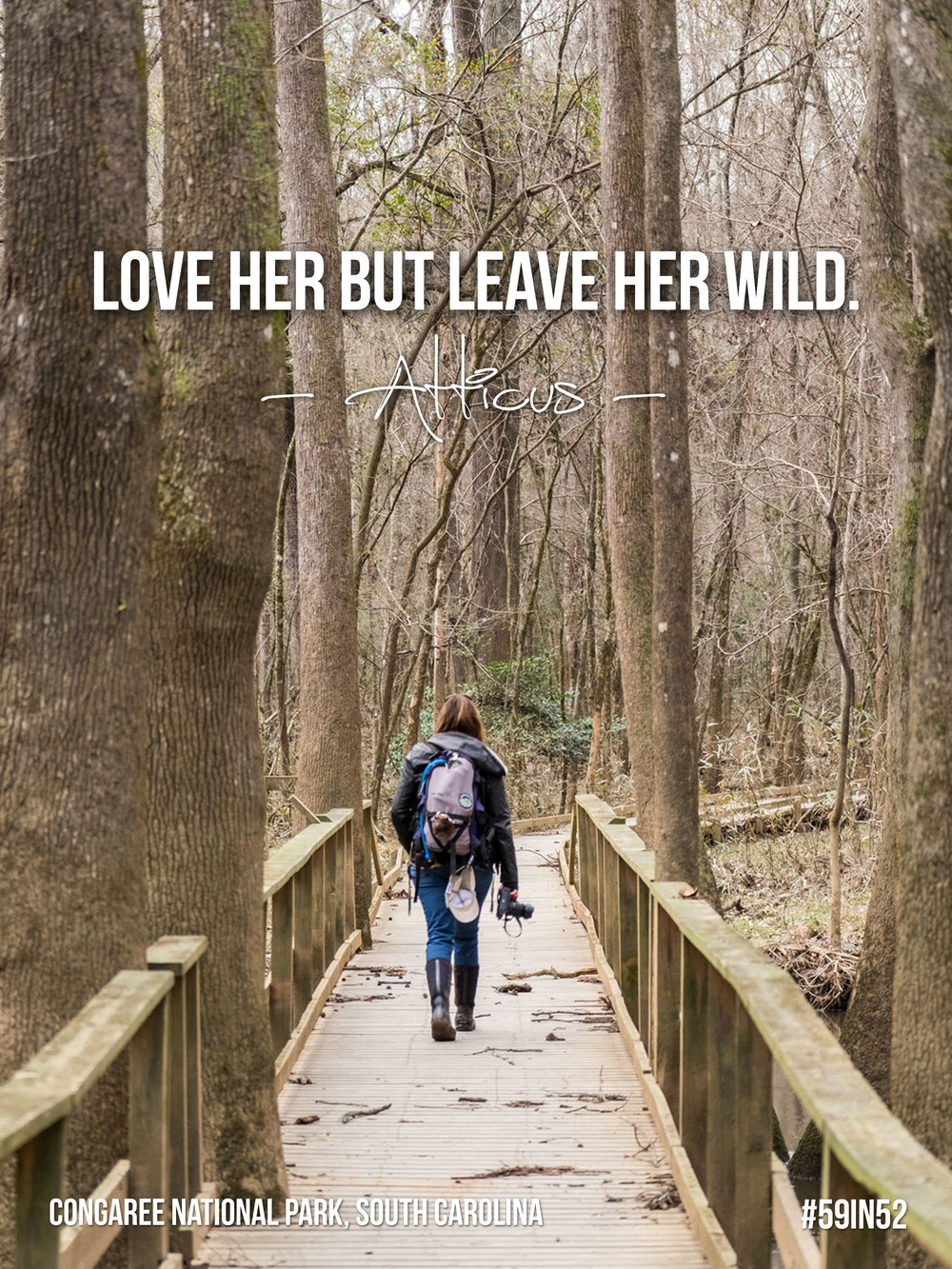 """Love her but leave her wild."" - Atticus"