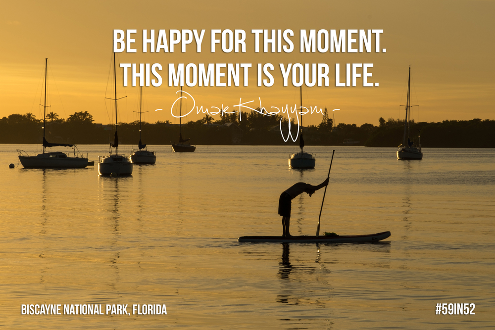 """Be happy for this moment. This moment is your life."" - Omar Khayyam"