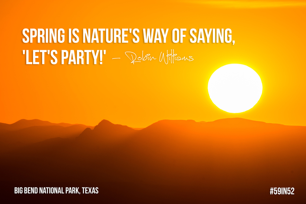 """Spring is nature's way of saying 'Let's Party!'"" Robin Williams 