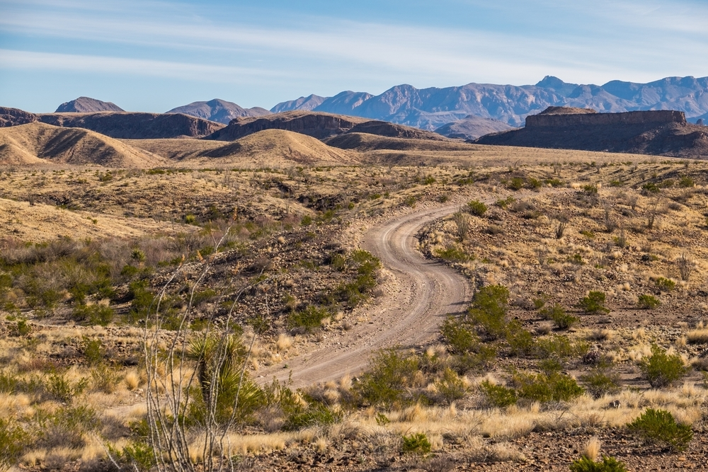 River Road is a 50-mile primitive road winding along the Rio Grande River that borders the United States and Mexico.