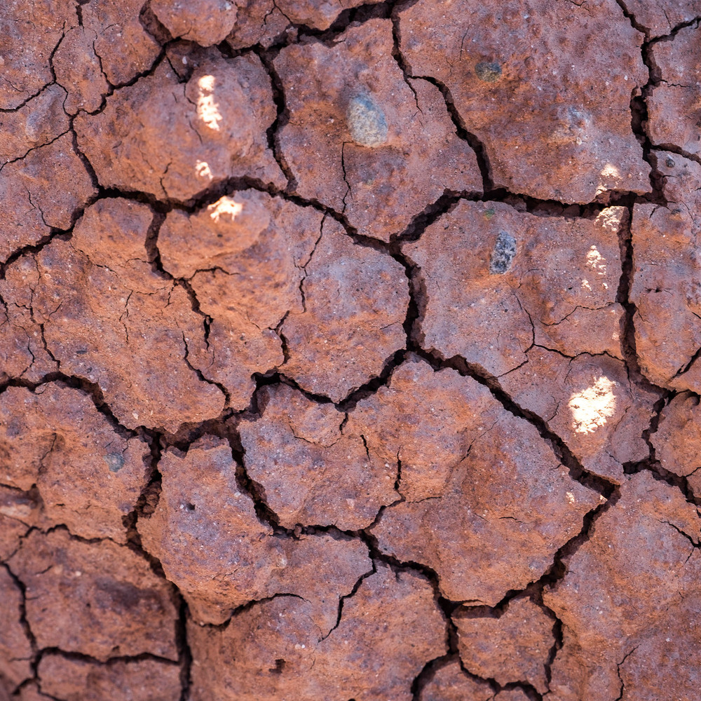 Dry cracking Earth in the wild desert of Big Bend.