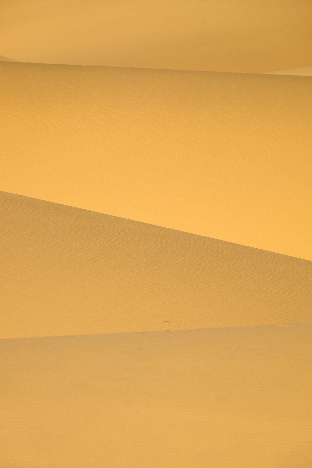 A long lens can offer the opportunity for some really interesting abstracts. Yes, this is a real photograph of sand dunes. Shadow and light.