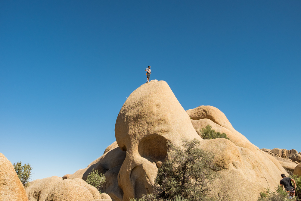 Joshua Tree National Park The Greatest American Road Trip