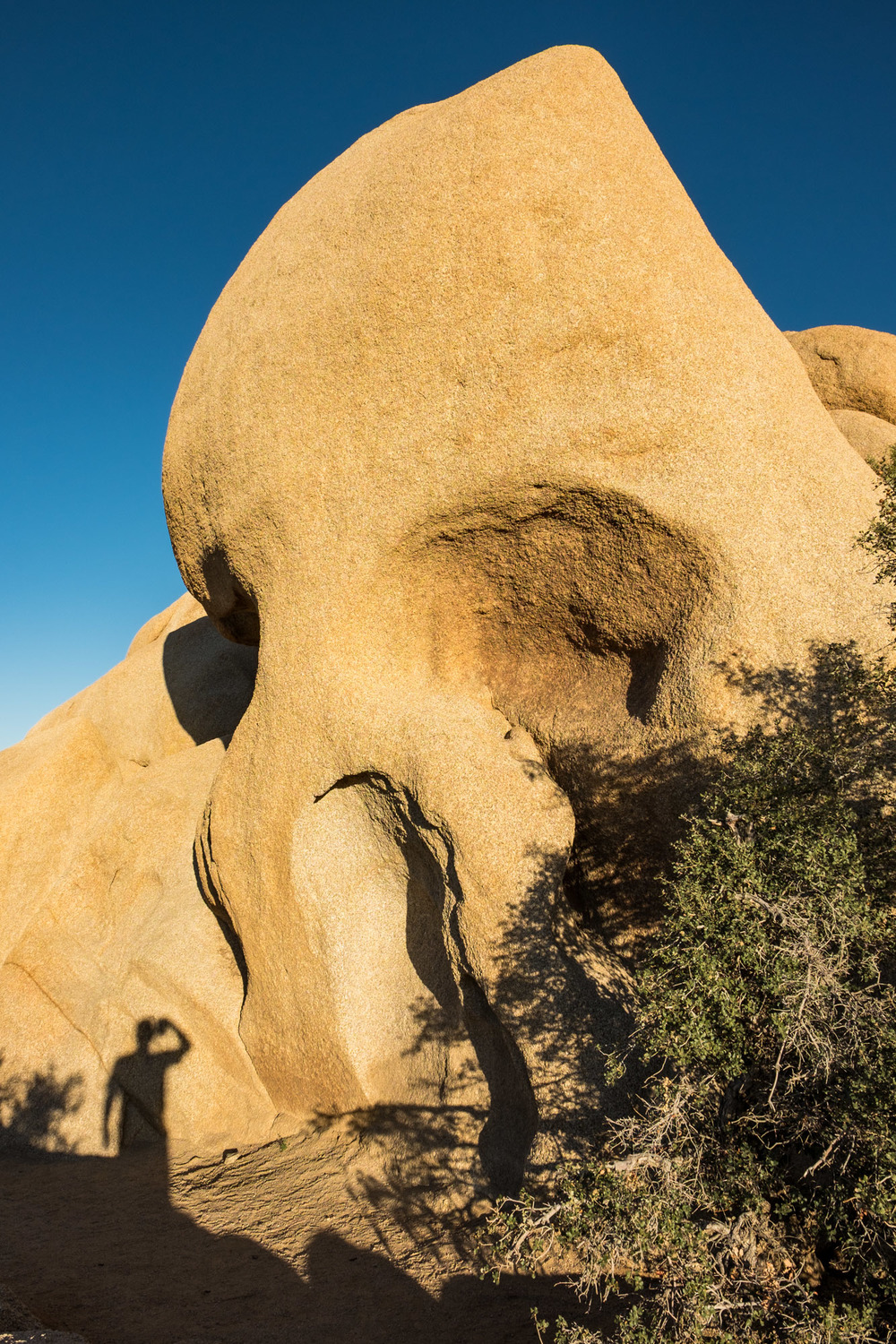 This is the skeleton rock, which honestly to me just looks like a giant Homer Simpson head.