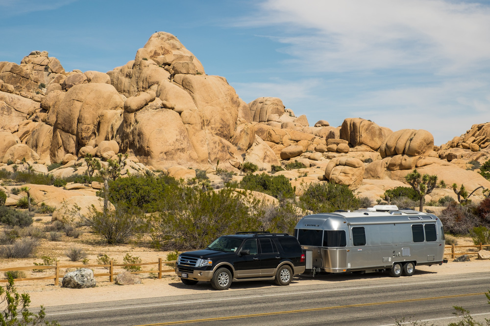 Wally is looking really good in front of the Joshua Tree rocks at Jumbo Rocks Campground.
